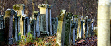 German vicar's grave therapy thwarted