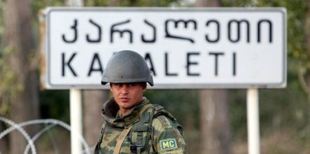 Germany willing to send 40 observers to Georgia