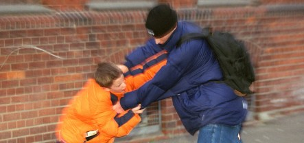 Immigrant youth not more violent than German kids