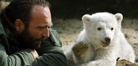 Auction of late Knut zookeeper's effects sparks ugly family fight