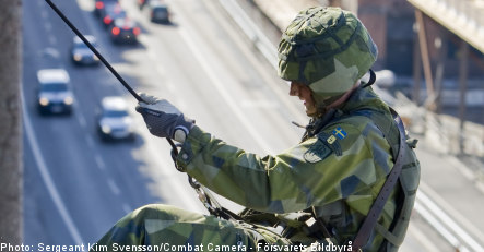 Swedish army to be cut by one third