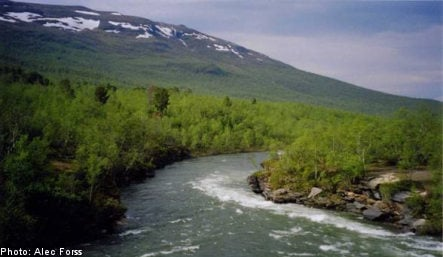 Sweden's national parks celebrate 100 years