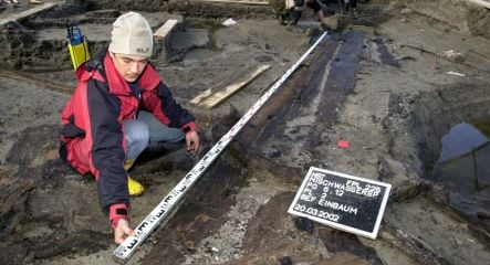 Archaeology office lets 7,000-year-old boats rot away
