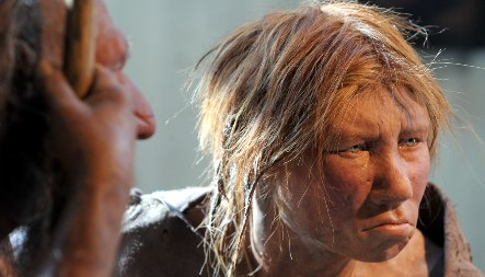 Research shows Neanderthals suffered painful, yet simple childbirth