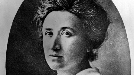 Rosa Luxemburg's body likely found 90 years after murder