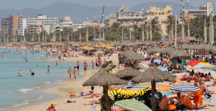 Students bring home swine flu from Mallorca