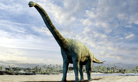 German scientists discover a new type of dinosaur in Niger