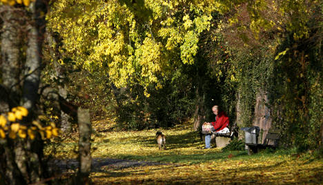 Springlike highs expected for weekend