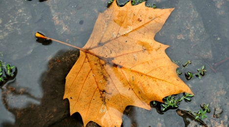 Autumn to begin with no last gasp of summer