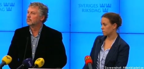 Green Party: No agreement with Reinfeldt