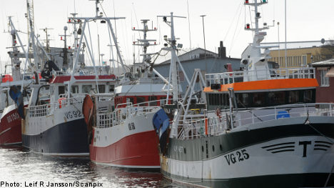 Sweden loses battle over Baltic fishing quotas