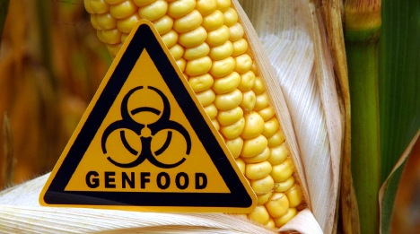 US considered trade war over GM crops