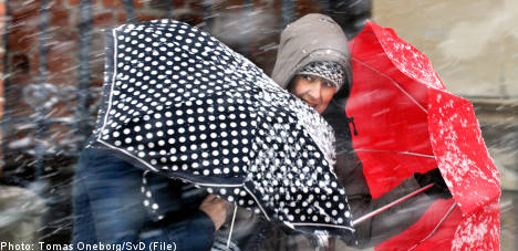 Winter winds prompt Swedish weather warning