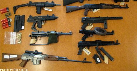 Swedish MPs seek gun law review
