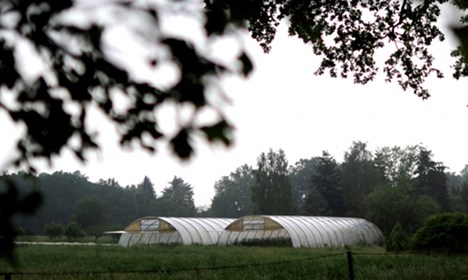 E. coli tainted farm cleared to reopen