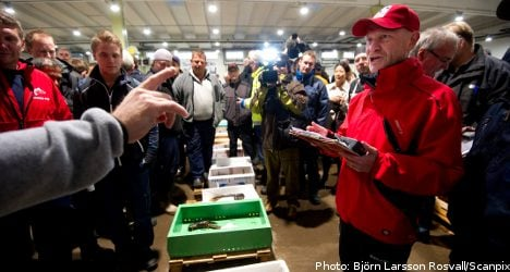 Swedish lobster nets new record price