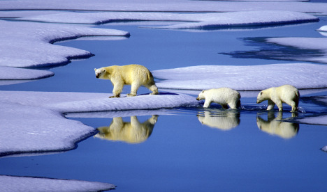 Less Arctic ice than ever