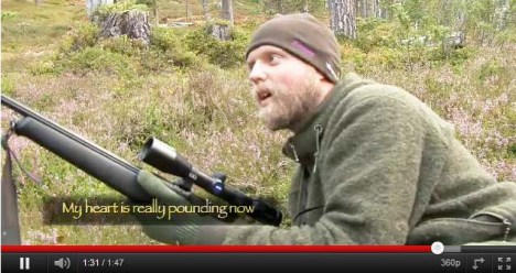 Norwegian 'wild man' faked famed blog while living in a Swedish hotel