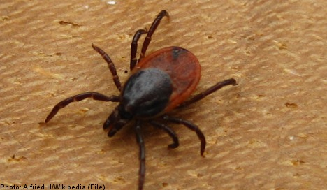 New tick-borne disease discovered in Sweden