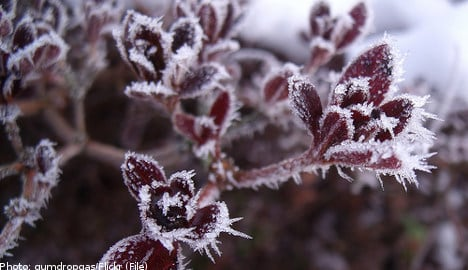 Frosty night ahead for most of Sweden