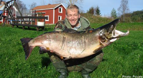 'Record' salmon pulled from Swedish stream