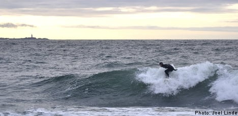 Swedish surfers defy cold to catch winter waves