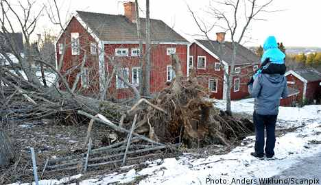 Many still without power after storm Dagmar