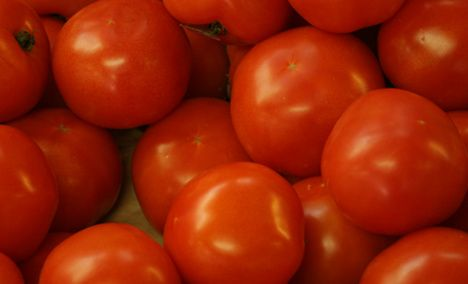 Sarko junior pelts police woman with tomatoes