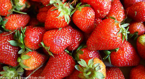 Strawberry 'scandal' leaves Swedes seething
