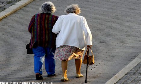 Two 'portly' old ladies tackle would-be thief