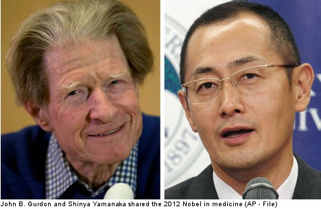 Nobel in medicine goes to stem cell researchers