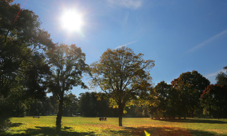 Sunny skies bring brief relief from cold snap