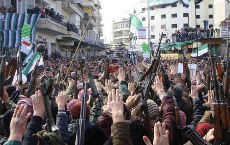 Germany 'weighs up' Syrian arms embargo
