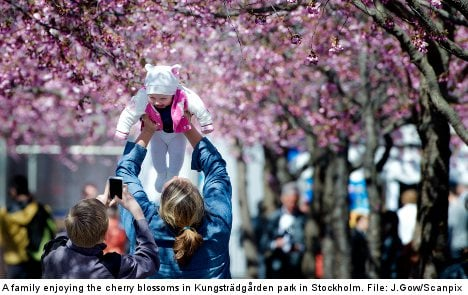 Swedes lead 'second best lives' in the world: study