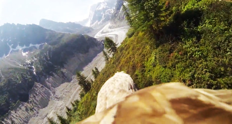 VIDEO: Eagle-cam offers bird's eye view of Alps