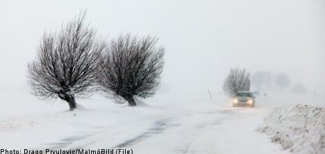 'Wild' snow storms set to smother Sweden