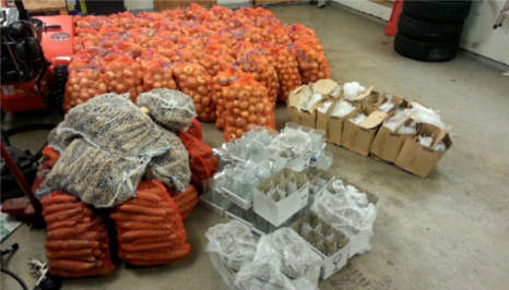 Poles caught smuggling onions into Norway