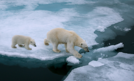 Norway must react to IPCC climate report
