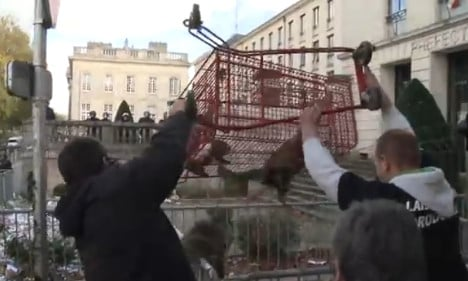 VIDEO: French farmers filmed abusing animals