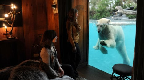 French zoo offers 'night at home' with polar bear