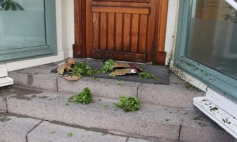 Suspect bomb parcel contained 'leafy greens'