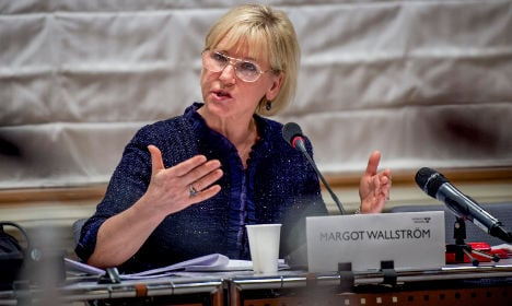 Swedish foreign minister quizzed on Palestine
