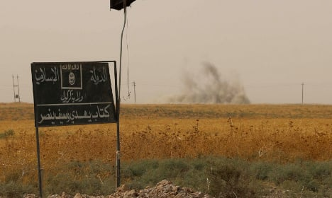 France's air strikes likely killed French jihadists