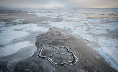 Swedish researchers find Ice Age 'missing link'