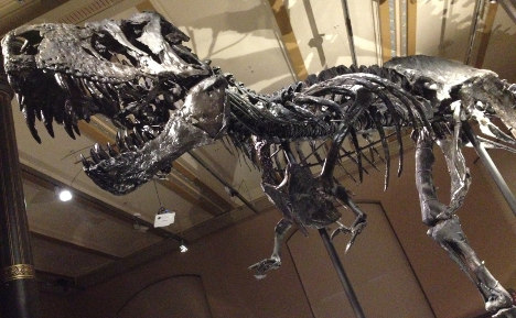 Berlin museum hopes giant T-Rex will be big hit