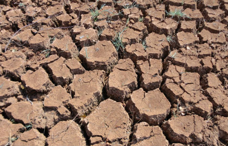 'Drastic heatwaves' if warming continues