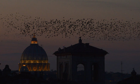 Never rains but it pours for guano-hit Rome