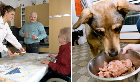 Seniors' Xmas ragout turns out to be dog food