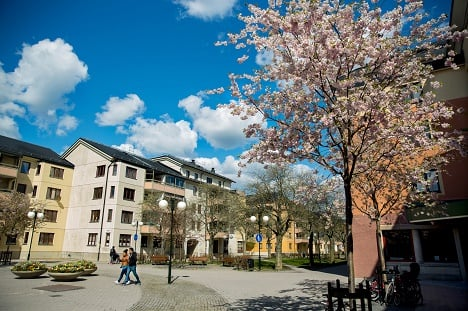 Stockholm housing: 'Be open to discovering the city'