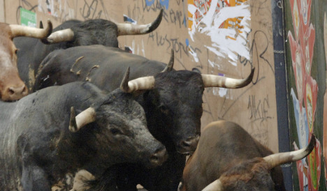 Man gored to death during bull running festival in Spain